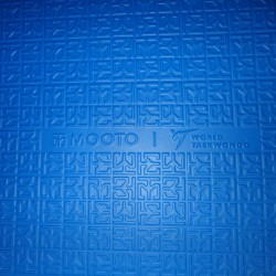 Tatami Puzzle Mat MOOTO WT Approved 2.5cm